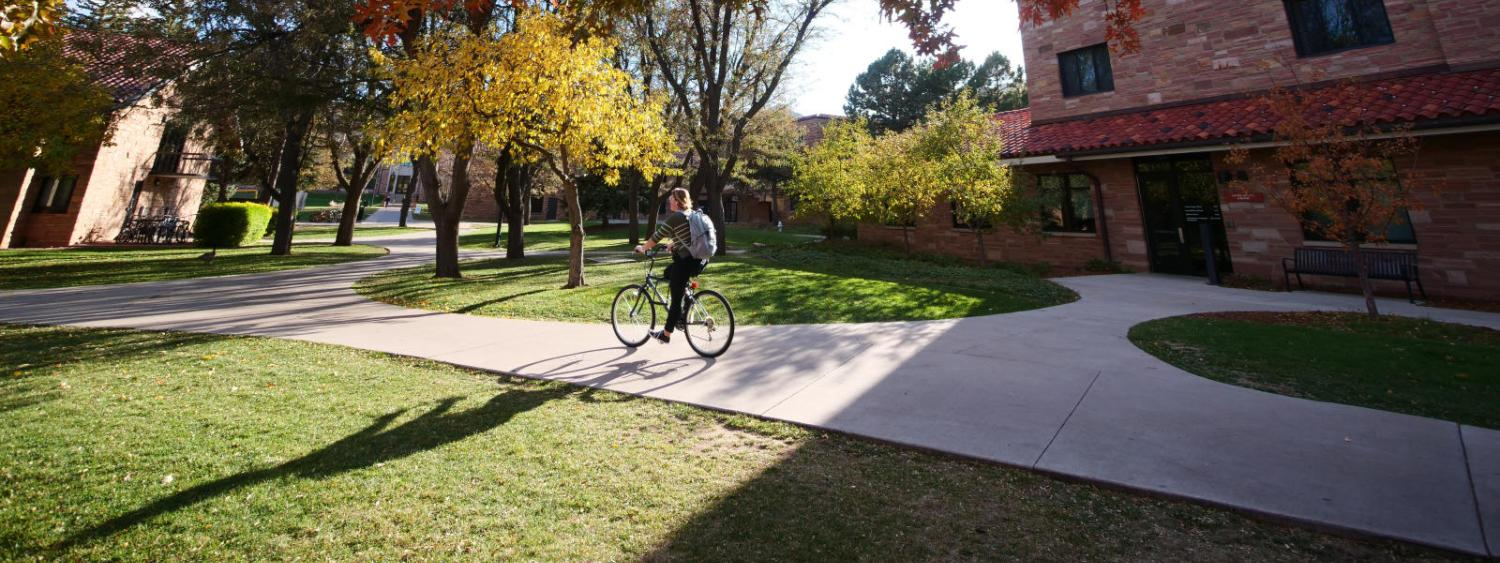 fall color change on campus tree leaves, student riding bike