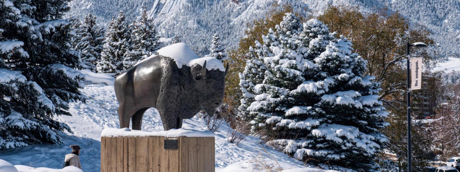 ralphie statue covered in snow