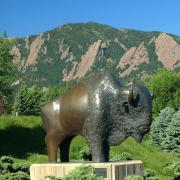 Bronze statue of a buffalo