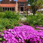 UMC with flowers
