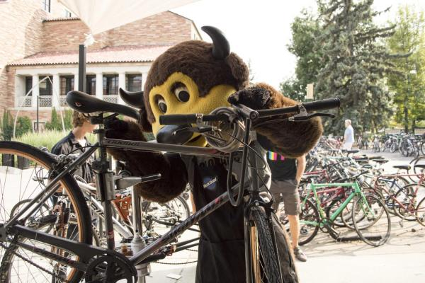 CU Boulder mascot Chip helping a student with their bike.