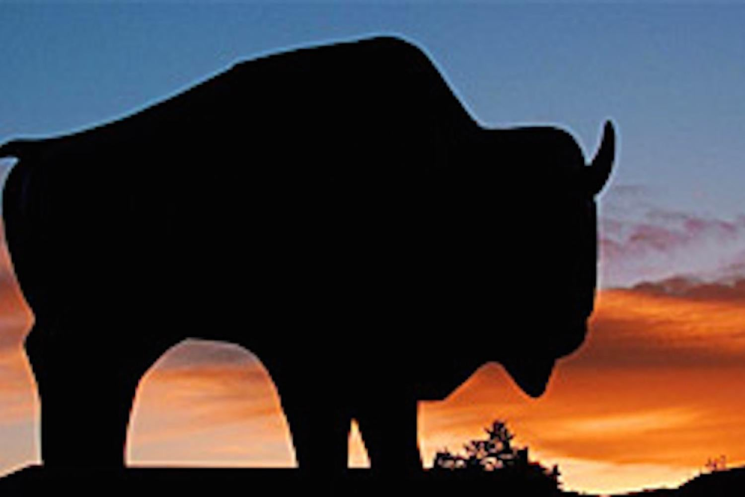 Bison statue at sunset
