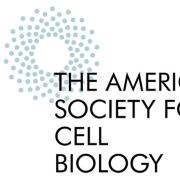 ASCB: An international forum for cell biology