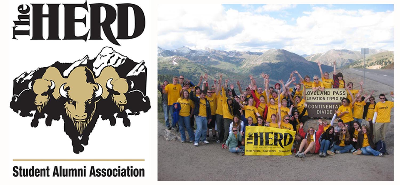The Herd header