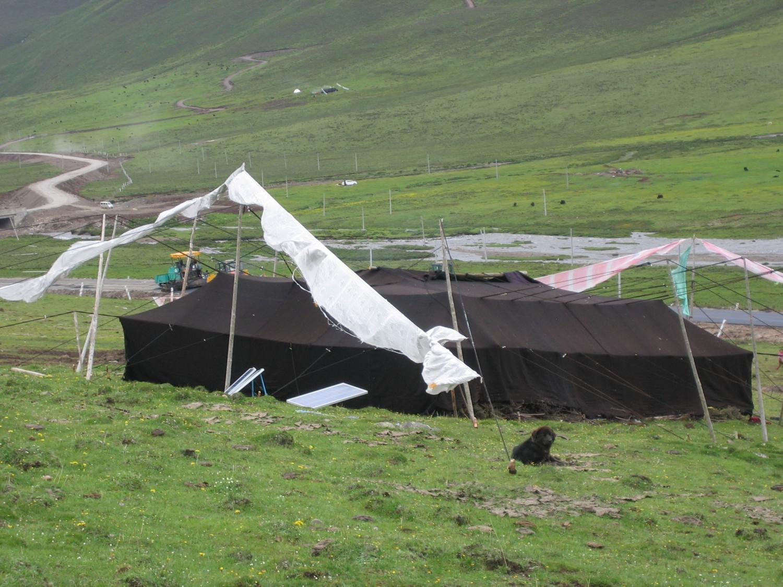 Black Tent on the Grasslands