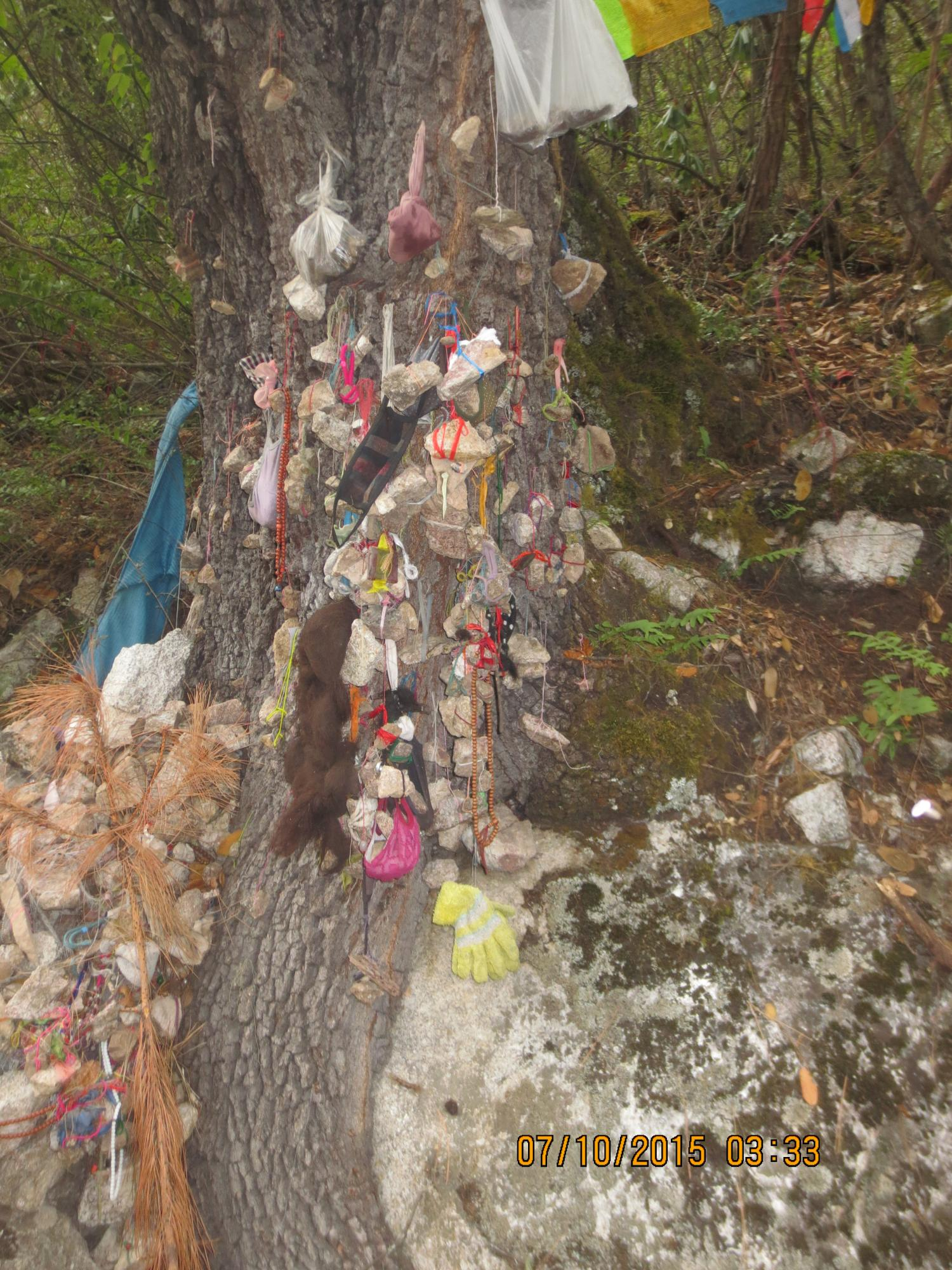 Along the route many pilgrims fasten stones to strings and hang them from trees. These are said to be loaded with the pilgrims' sins, now left behind on the path.
