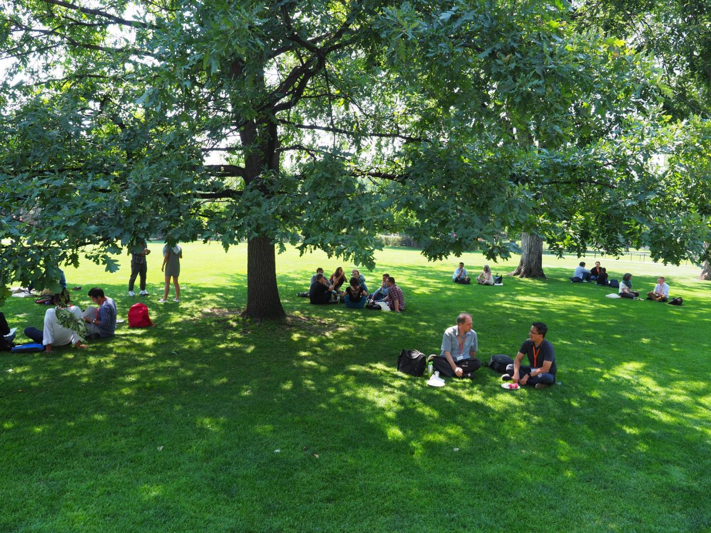 HSC V Participants on the Norlin Quad Lawn