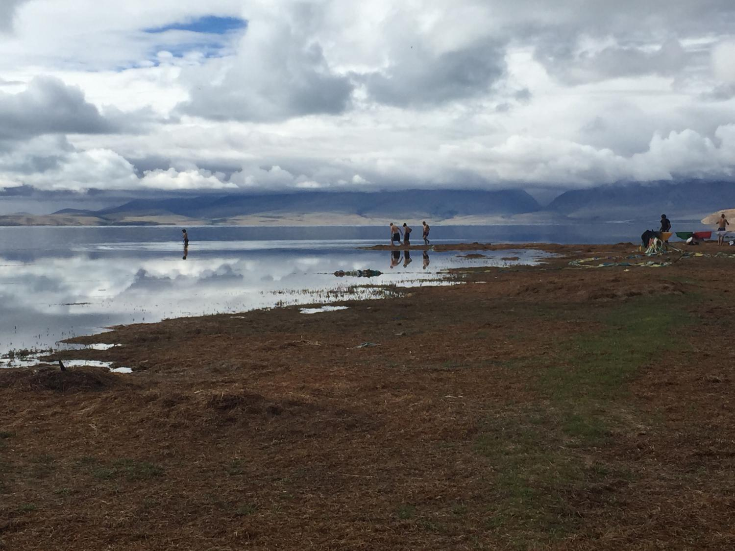heading for a dip in Manasarovar