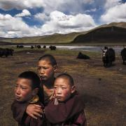 A group of young Tibetan monks huddles on a degraded pasture on the Tibetan Plateau. (Kevin Frayer/Getty)