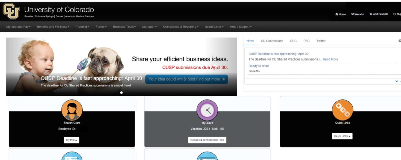 Elevate website screenshot