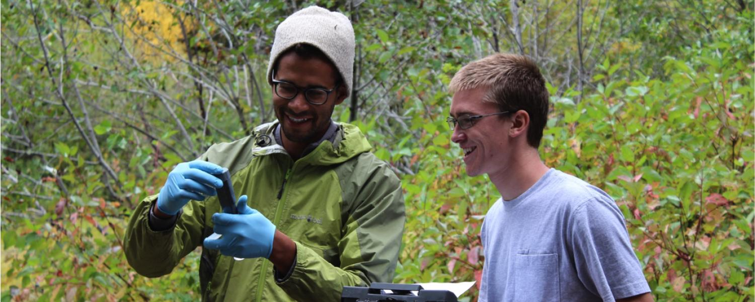 Two researchers are in the forest, analyzing a sample and taking notes