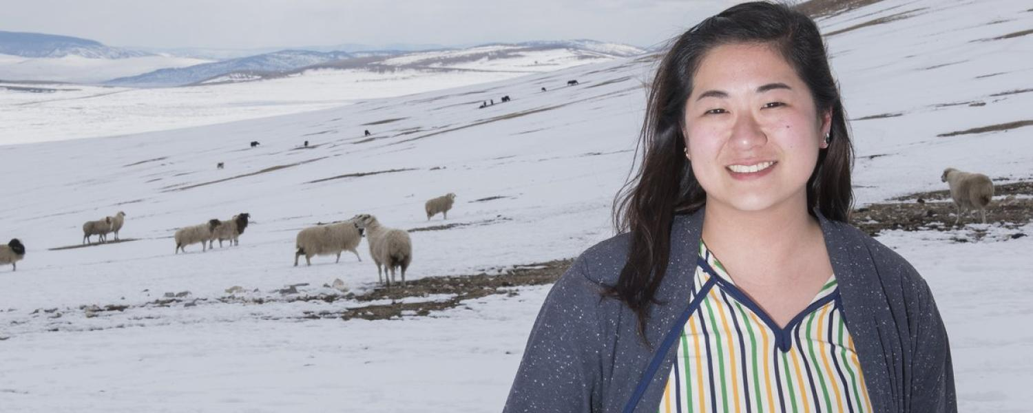Peace Corps volunteer in front of sheep on snowy hill