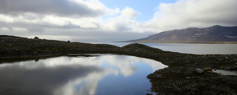 A polar landscape