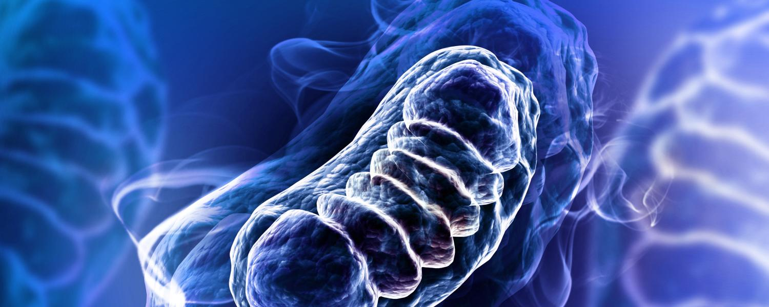 A blue image of mitochondria
