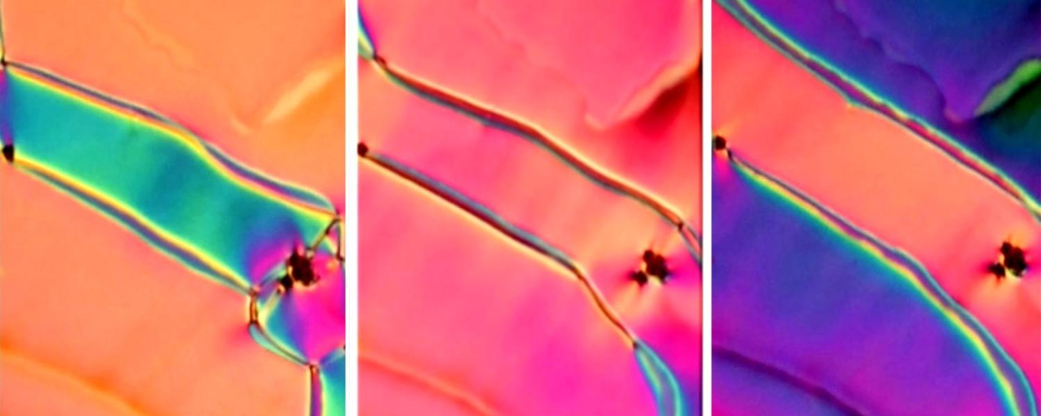 Three views of a new phase of liquid crystal as seen under the microscope
