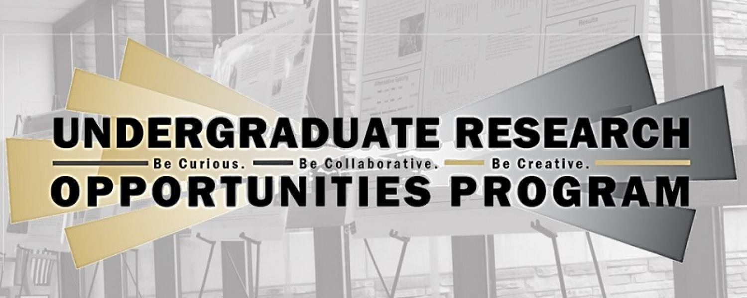 Undergraduate Research Opportunities Program