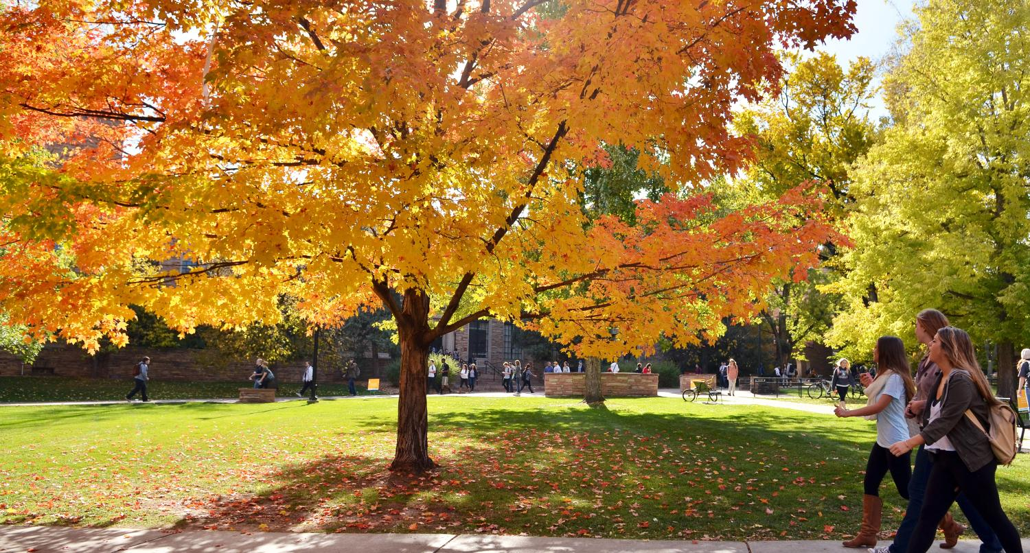 Students walk across campus with a tree in vibrant fall colors