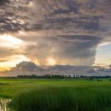 Clouds loom over green grass, pond
