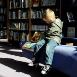 Child reads a book in the library