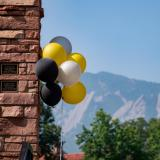 Black and gold balloons.