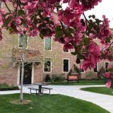 Scenic image of the School of Education courtyard