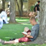 Student studying on campus