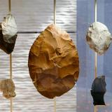 Unearthed: Ancient Life in the Boulder Valley exhibit at Museum of Natural History