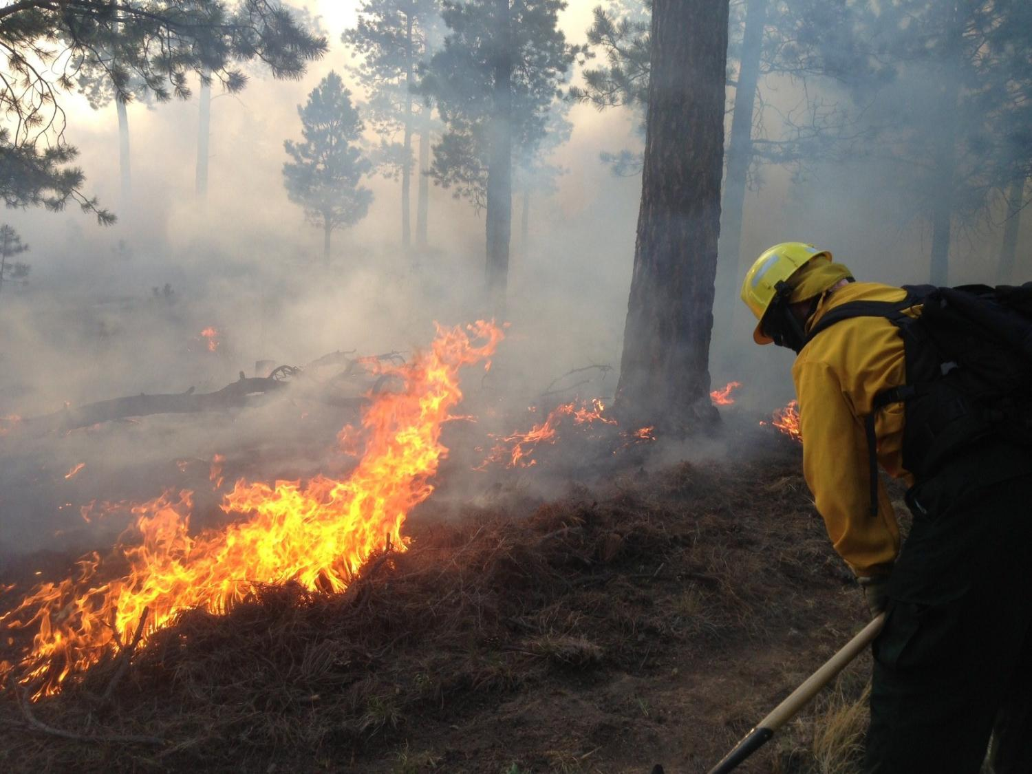 How wildfires contaminate drinking water sources | CU