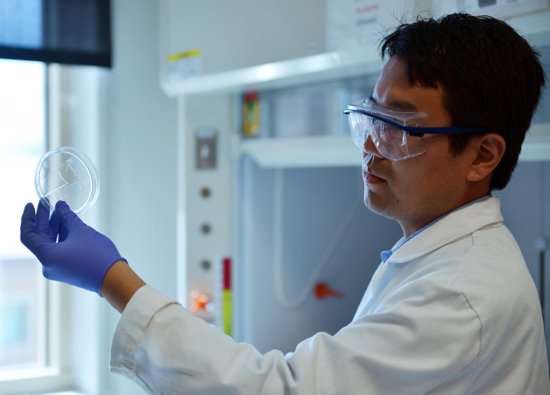 Scientist holding petri dish