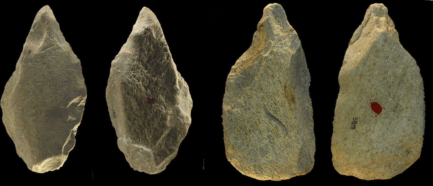 Four pointed bone tools