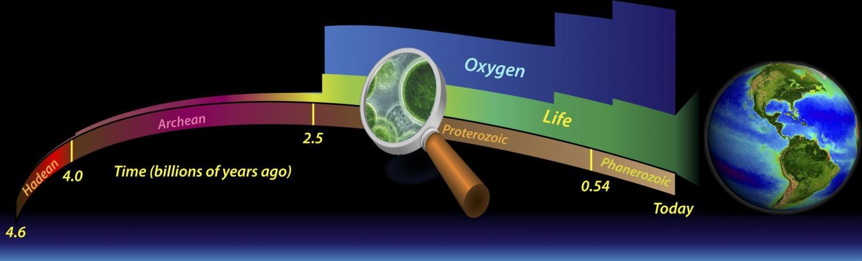 Oxygen graphic