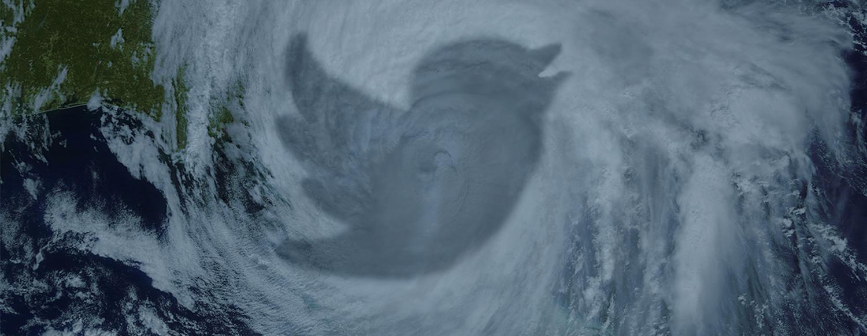 Twitter bird overlay on hurricane