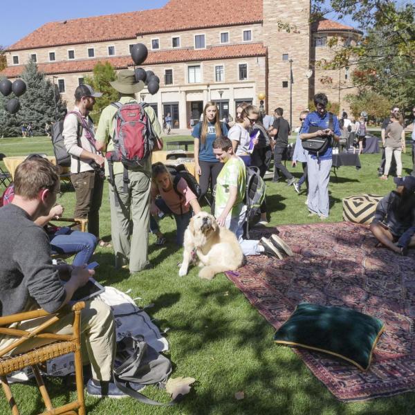 The first-ever CU Boulder dog café