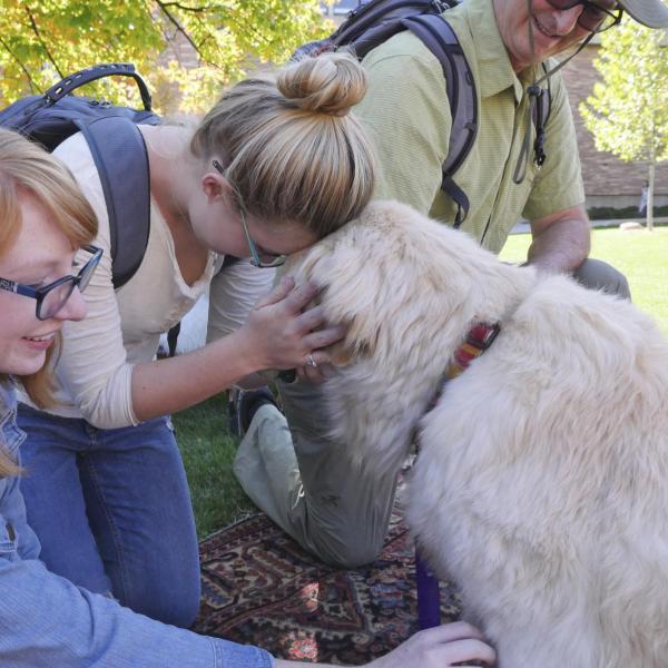 Student pets dog at the first-ever CU Boulder dog café