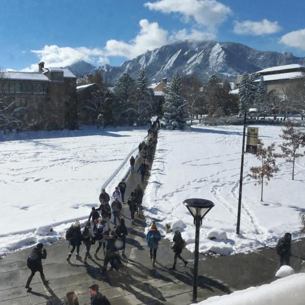 Snowy campus on Monday. Photo by Casey A. Cass.