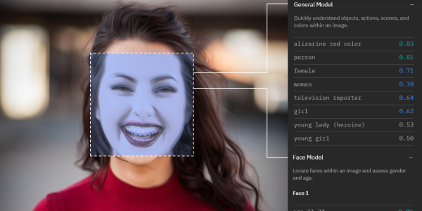 A woman seen through facial recognition software
