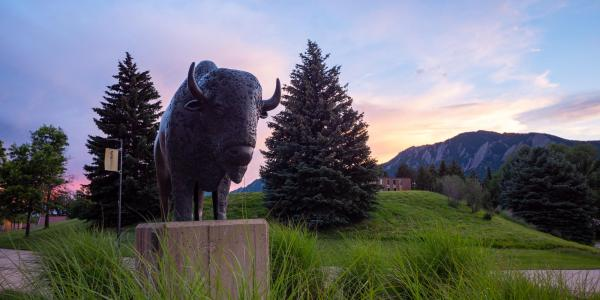 Sunset behind the Flatirons and Ralphie Sculpture by the CU Events Center on June 24, 2020. (Photo by Glenn Asakawa/University of Colorado)