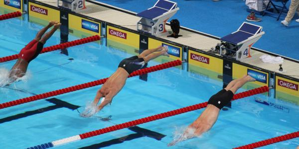 swimmers diving into a pool