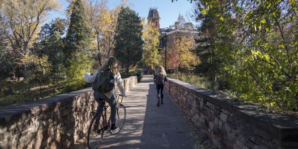 students on campus footbridge