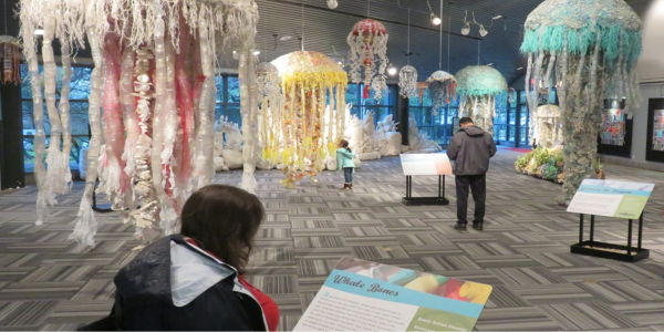 Jellyfish artwork hanging from ceiling on campus