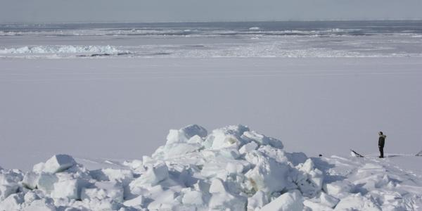 Man stands on an arctic glacier