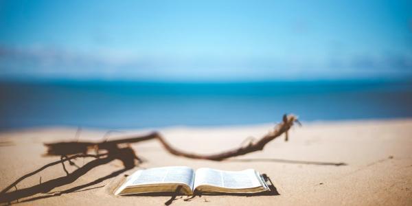 A book sitting on a beach