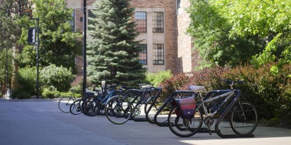 Bike racks on campus