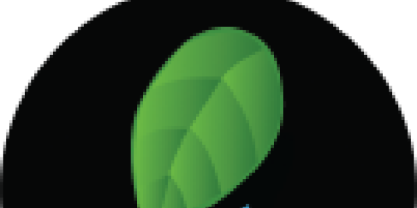Leaf and water drop graphic