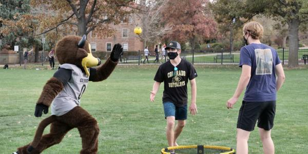 Buffalo mascot Chip playing lawn games with students
