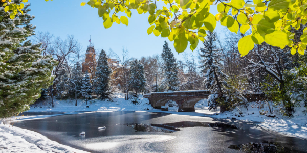 Snowy Varsity Lake and bridge
