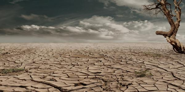 A drought-parched landscape