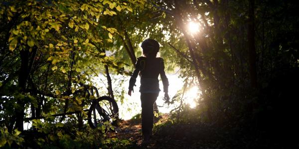 silhouette of child playing in the woods