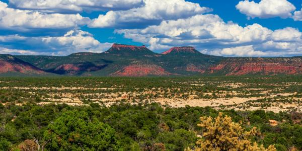 The twin buttes that give Bears Ears National Monument in Utah its name