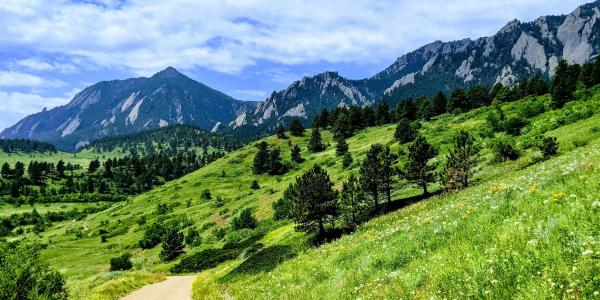 A view of a path leading up to the Flatirons